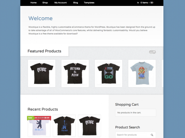 how to build an ecommerce website with wordpress