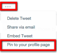 pin to your profile