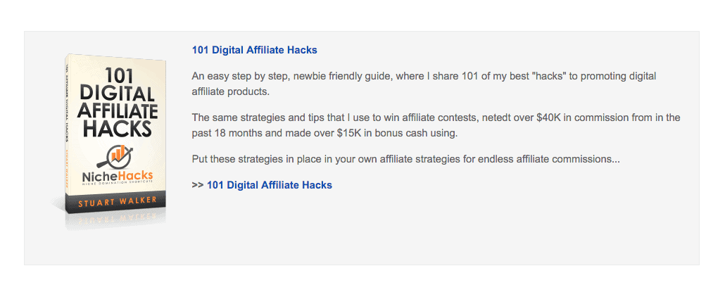 An example from the NicheHacks authority blog