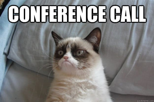 conference call cat